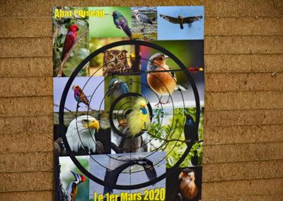 Abat l'oiseau 2020